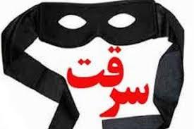 دستگیری ۲ سارق حرفهای در بویراحمد